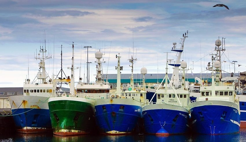 islanda pesca