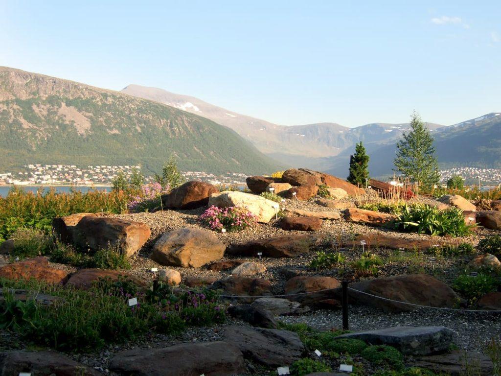 Botanic Garden Tromso