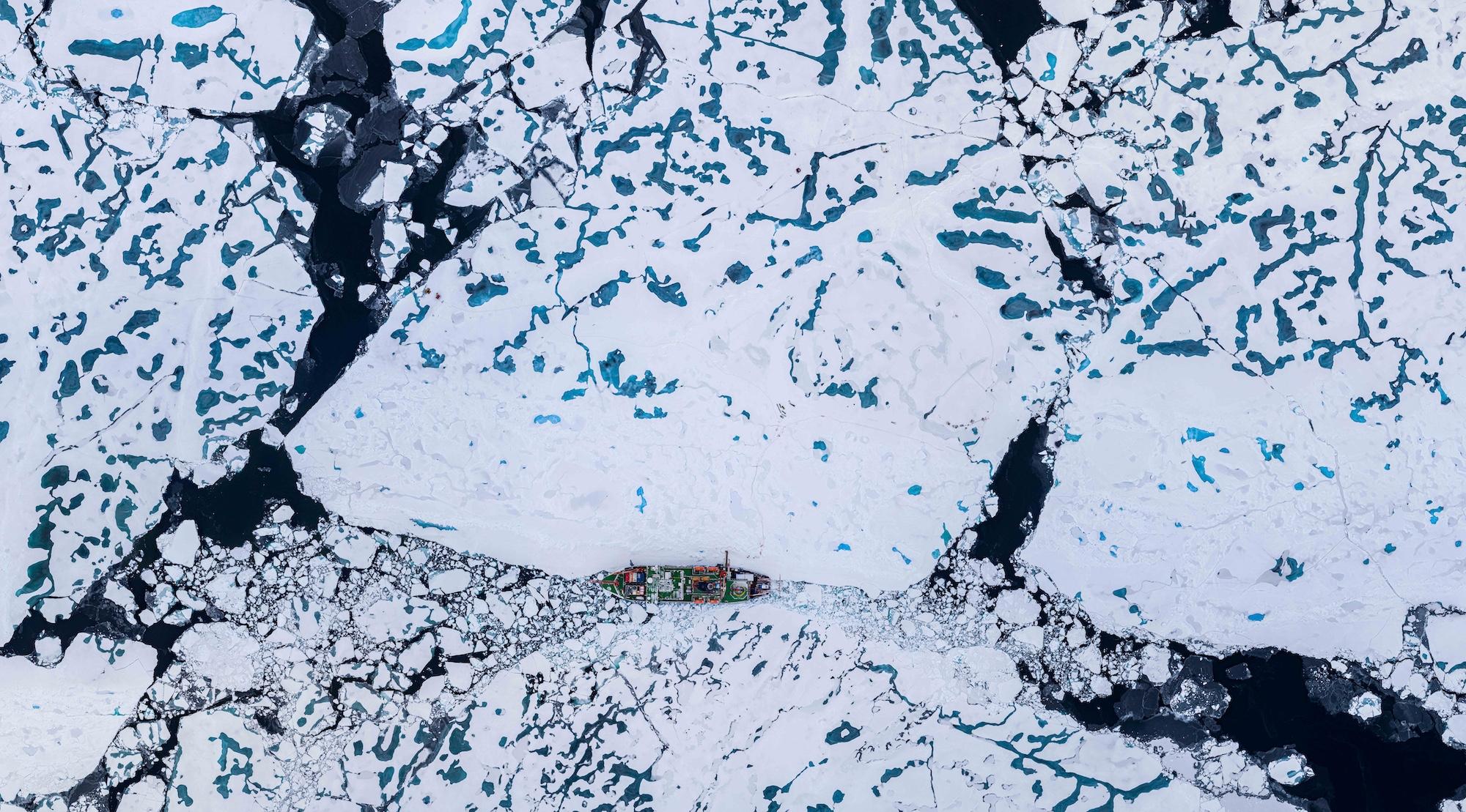 mosaic arctic