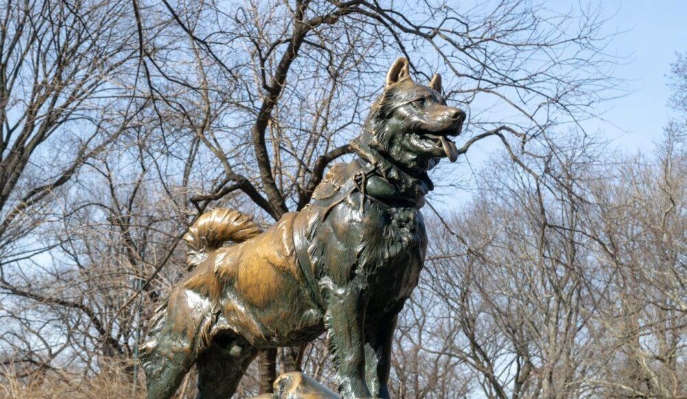 statua di balto