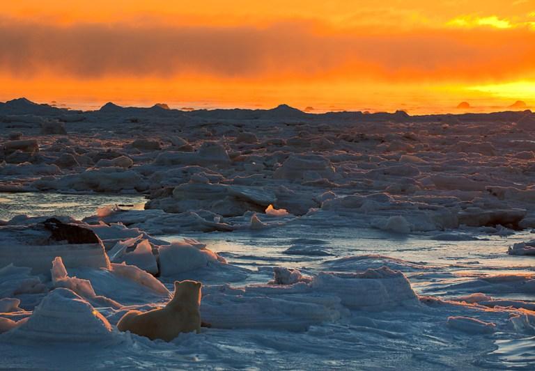 Tramonto nella Baia di Hudson (foto di T. Thompson)