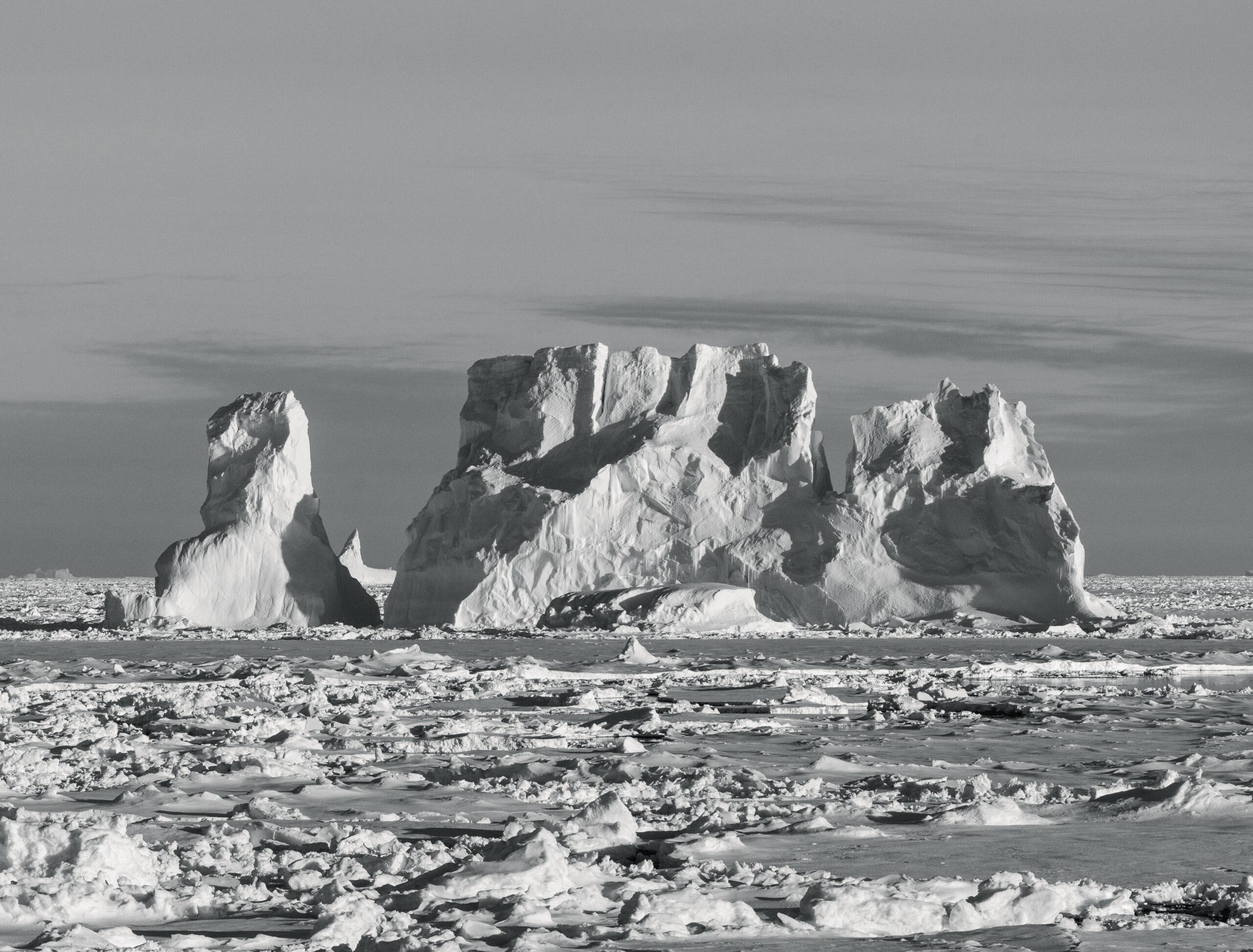 ghiacci artici