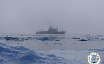 HN21 Alliance ghiacci